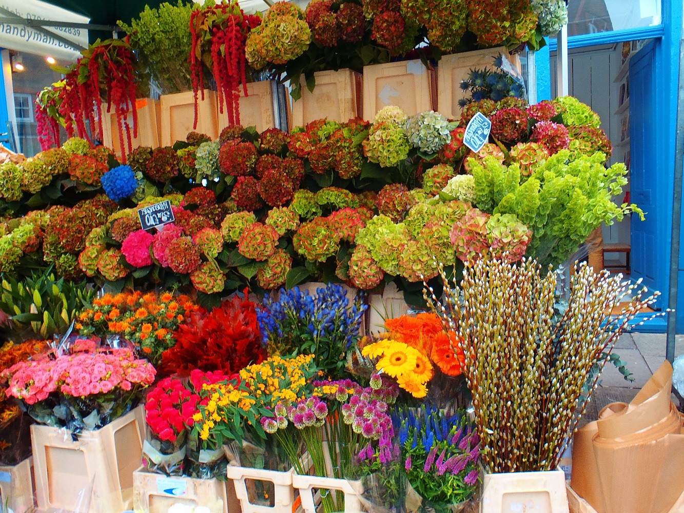 Columbia Road Flower Markets Never Ending Honeymoon